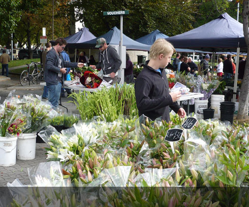 A plentiful supply of quality flowers available at Hobarts Salamanca Markets